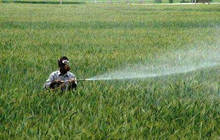 باقیمانده سموم کشاورزی