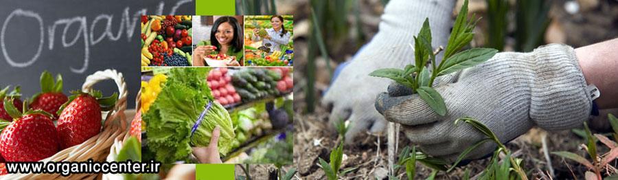 کشاورزی ارگانیک و زیستی