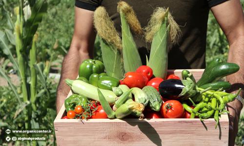 آیا مواد غذایی ارگانیک خطر ابتلا به سرطان را کاهش می هد؟