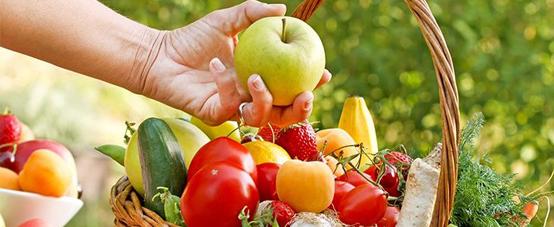 تاثیرات توانمند سازی سامانه کشاورزی ارگانیک (زیستی)